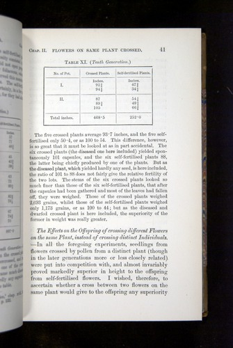 Image of Darwin-F1249-1876-041