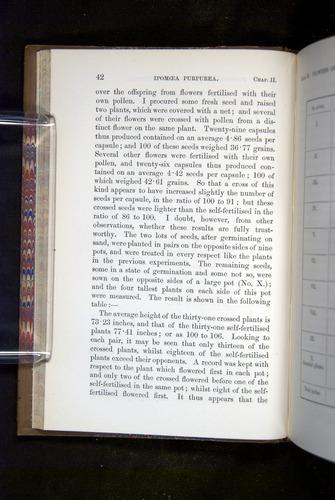 Image of Darwin-F1249-1876-042