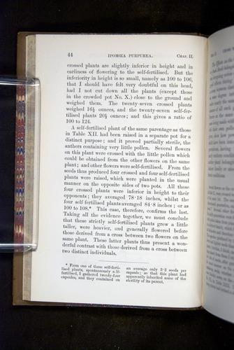 Image of Darwin-F1249-1876-044