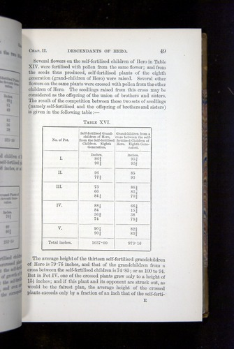 Image of Darwin-F1249-1876-049