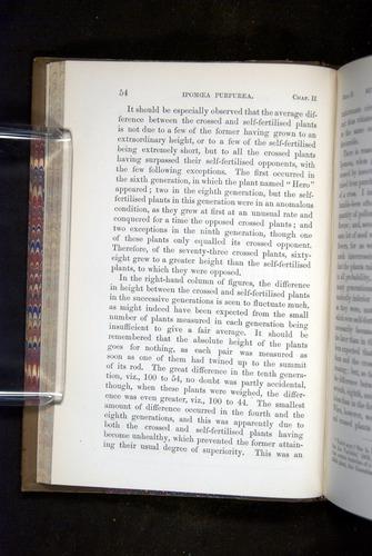 Image of Darwin-F1249-1876-054