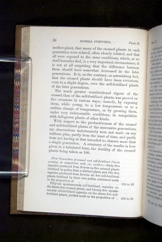 Image of Darwin-F1249-1876-056