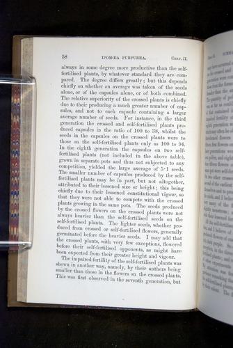 Image of Darwin-F1249-1876-058