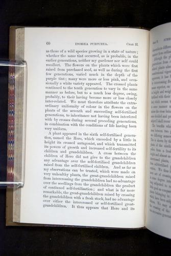 Image of Darwin-F1249-1876-060