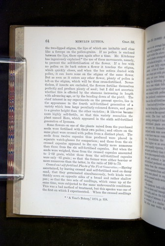 Image of Darwin-F1249-1876-064