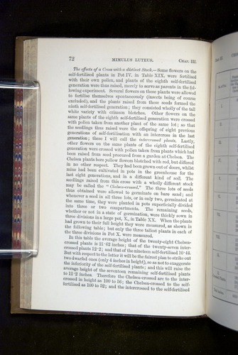 Image of Darwin-F1249-1876-072