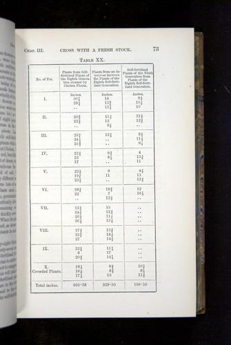 Image of Darwin-F1249-1876-073