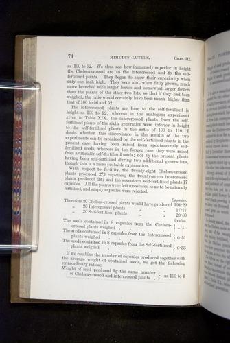 Image of Darwin-F1249-1876-074