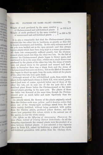 Image of Darwin-F1249-1876-075