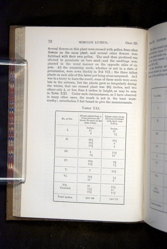 Image of Darwin-F1249-1876-076