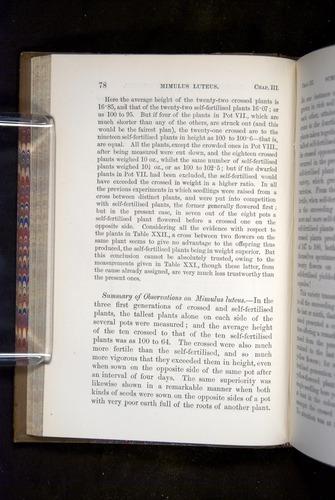 Image of Darwin-F1249-1876-078