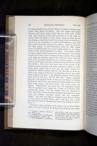 Image of Darwin-F1249-1876-082
