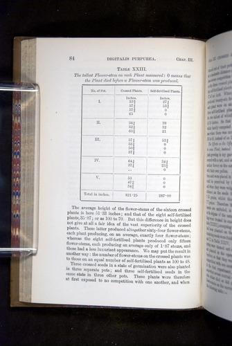 Image of Darwin-F1249-1876-084