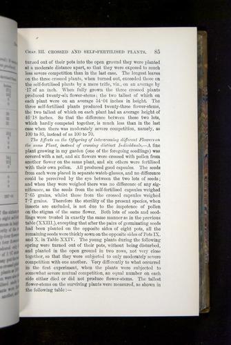 Image of Darwin-F1249-1876-085