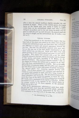Image of Darwin-F1249-1876-088