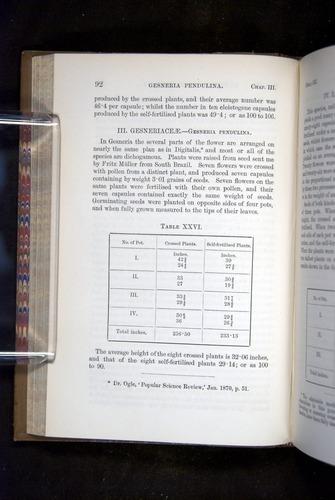 Image of Darwin-F1249-1876-092