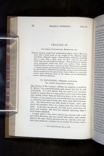 Image of Darwin-F1249-1876-098