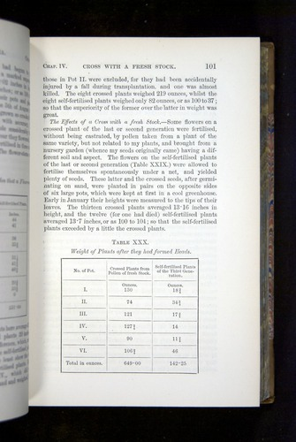 Image of Darwin-F1249-1876-101