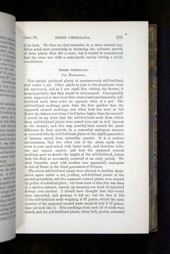 Image of Darwin-F1249-1876-103