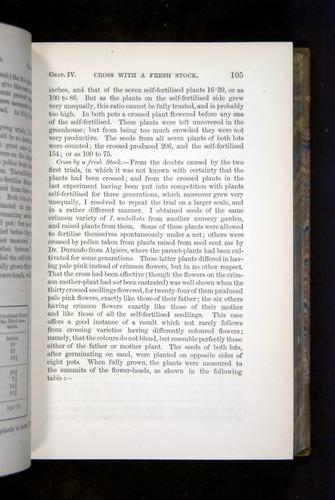 Image of Darwin-F1249-1876-105