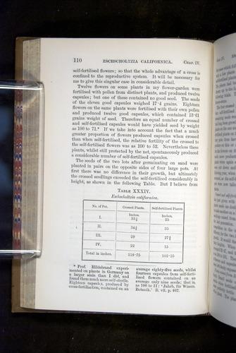 Image of Darwin-F1249-1876-110