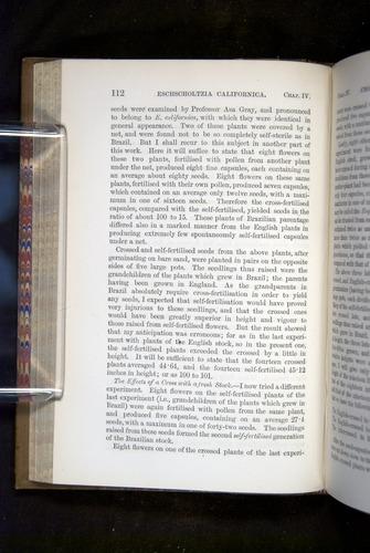 Image of Darwin-F1249-1876-112
