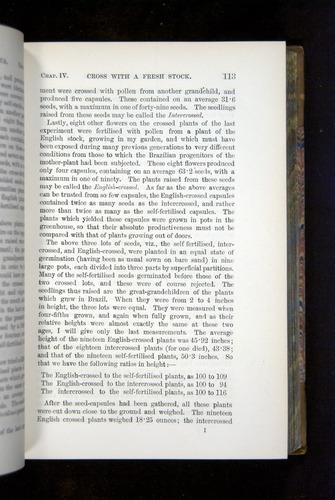 Image of Darwin-F1249-1876-113