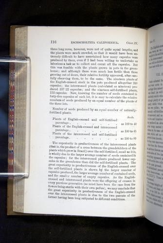Image of Darwin-F1249-1876-116