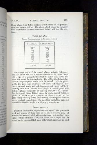 Image of Darwin-F1249-1876-119