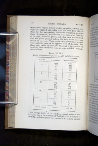 Image of Darwin-F1249-1876-120