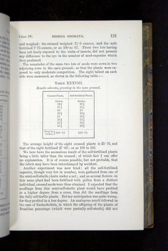 Image of Darwin-F1249-1876-121