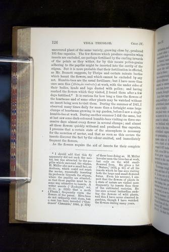 Image of Darwin-F1249-1876-124