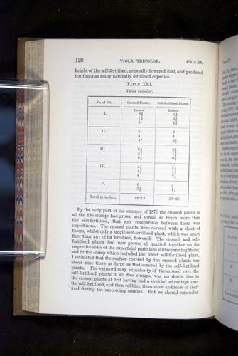 Image of Darwin-F1249-1876-126