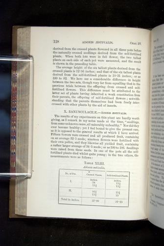 Image of Darwin-F1249-1876-128