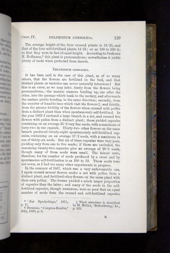 Image of Darwin-F1249-1876-129