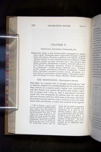 Image of Darwin-F1249-1876-142