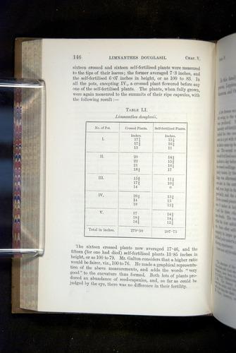 Image of Darwin-F1249-1876-146