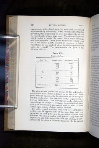 Image of Darwin-F1249-1876-148