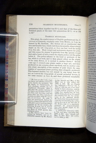 Image of Darwin-F1249-1876-150