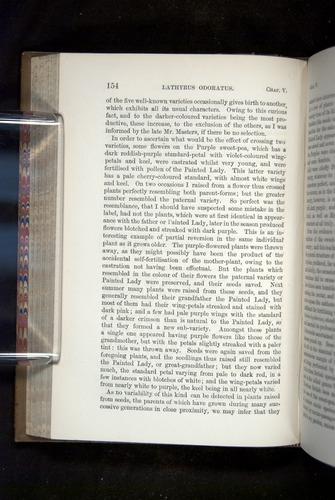 Image of Darwin-F1249-1876-154
