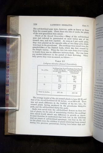 Image of Darwin-F1249-1876-158