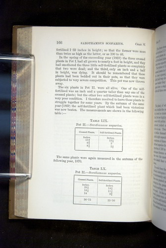 Image of Darwin-F1249-1876-166