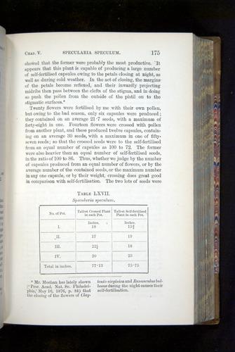 Image of Darwin-F1249-1876-175