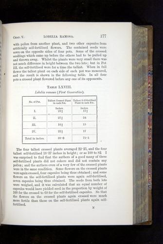 Image of Darwin-F1249-1876-177