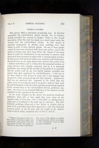 Image of Darwin-F1249-1876-179
