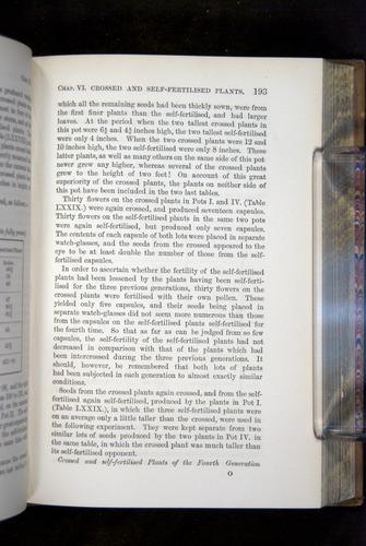 Image of Darwin-F1249-1876-193