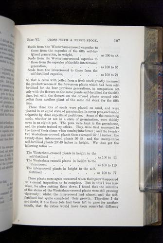 Image of Darwin-F1249-1876-197