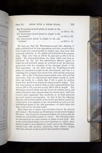 Image of Darwin-F1249-1876-199