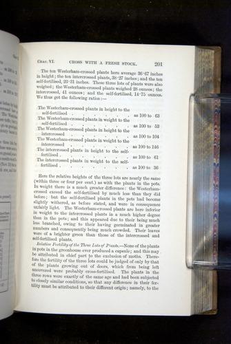 Image of Darwin-F1249-1876-201