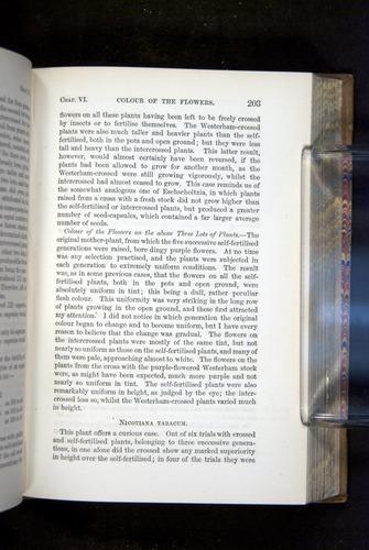 Image of Darwin-F1249-1876-203